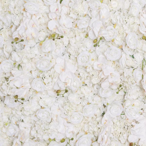 blomstervägg hyra stockholm